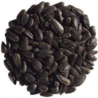 black oil sunflower seeds for birds