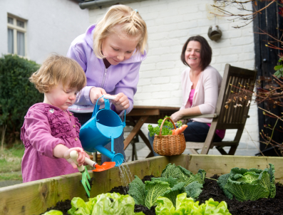 garden harvest supply is a family run enterprise born out of our love of gardening our respect for the environment and our love of god and our fellow - Garden Harvest Supply